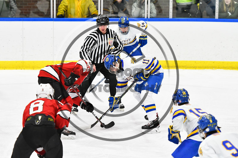 Baldwinsville Bees Mark Monaco (22) facing off against West Genesee Wildcats Andrew Schneid (11) in NYSPHSAA Section III Boys Ice hockey action at Shove Park in Camillus, New York on Tuesday, January 29, 2019. West Genesee won 5-1.