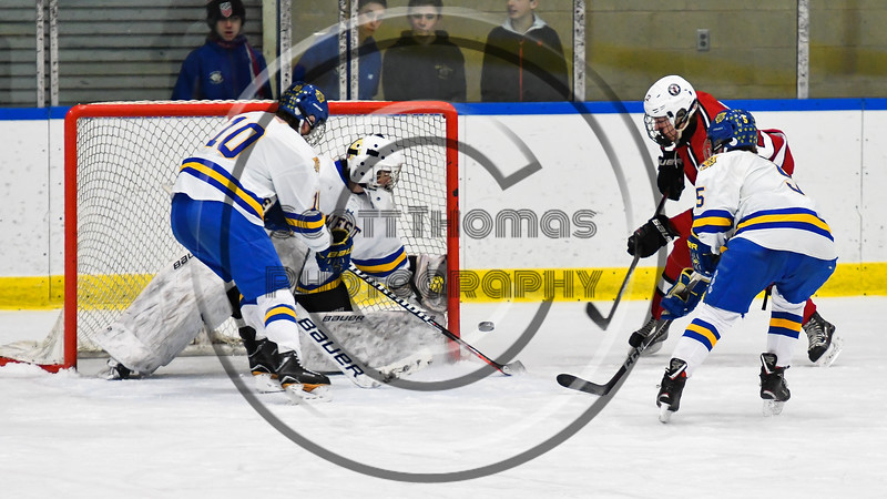West Genesee Wildcats goalie Chris Wells (31) keeps the puck out of the net against Baldwinsville Bees Mark Monaco (22) in NYSPHSAA Section III Boys Ice hockey action at Shove Park in Camillus, New York on Tuesday, January 29, 2019. West Genesee won 5-1.