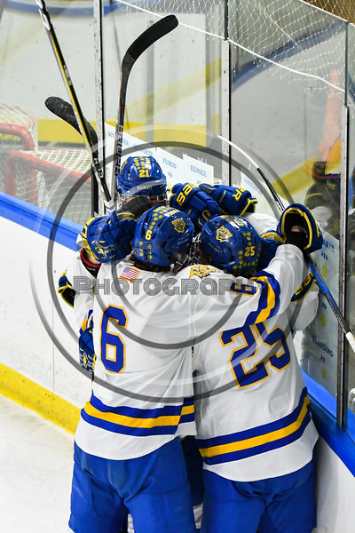 West Genesee Wildcats players congratulate Ryan Washo (5) for his goal against the Baldwinsville Bees in NYSPHSAA Section III Boys Ice hockey action at Shove Park in Camillus, New York on Tuesday, January 29, 2019. West Genesee won 5-1.