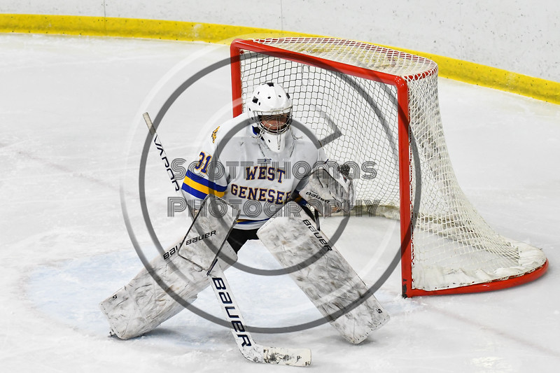 West Genesee Wildcats goalie Chris Wells (31) in net against the Baldwinsville Bees in NYSPHSAA Section III Boys Ice hockey action at Shove Park in Camillus, New York on Tuesday, January 29, 2019. West Genesee won 5-1.
