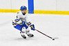 West Genesee Wildcats Joe McLaughlin (9) skating with the puck against the Baldwinsville Bees in NYSPHSAA Section III Boys Ice hockey action at Shove Park in Camillus, New York on Tuesday, January 29, 2019. West Genesee won 5-1.