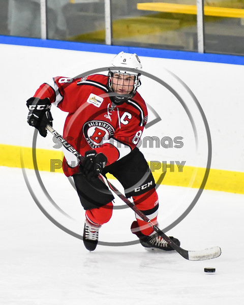 Baldwinsville Bees Parker Schroeder (8) skating with the puck against the West Genesee Wildcats in NYSPHSAA Section III Boys Ice hockey action at Shove Park in Camillus, New York on Tuesday, January 29, 2019. West Genesee won 5-1.