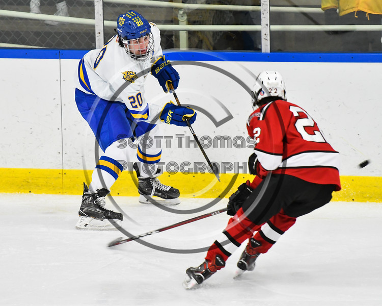 West Genesee Wildcats Jack Miller (20) flips the puck past Baldwinsville Bees Mark Monaco (22) in NYSPHSAA Section III Boys Ice hockey action at Shove Park in Camillus, New York on Tuesday, January 29, 2019. West Genesee won 5-1.