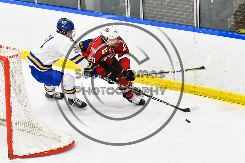 Baldwinsville Bees Casey Scott (20) getting checked by West Genesee Wildcats Jimmy Bergan (21) in NYSPHSAA Section III Boys Ice hockey action at Shove Park in Camillus, New York on Tuesday, January 29, 2019. West Genesee won 5-1.