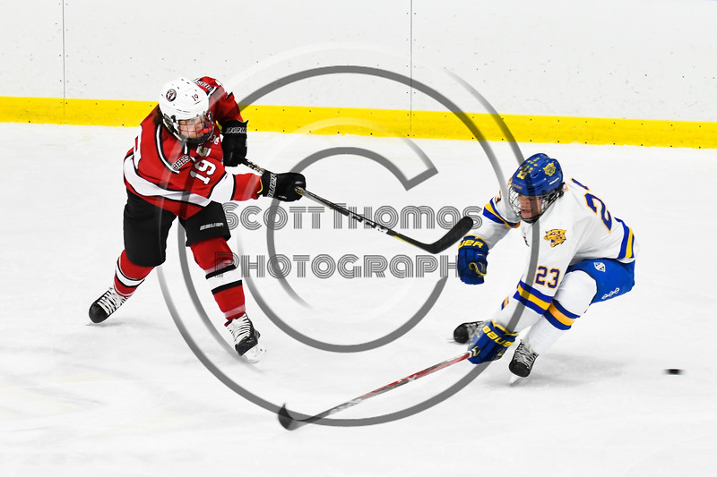 Baldwinsville Bees Michael Marsallo (19) fires the puck past West Genesee Wildcats Daniel Holzhauer (23) in NYSPHSAA Section III Boys Ice hockey action at Shove Park in Camillus, New York on Tuesday, January 29, 2019. West Genesee won 5-1.