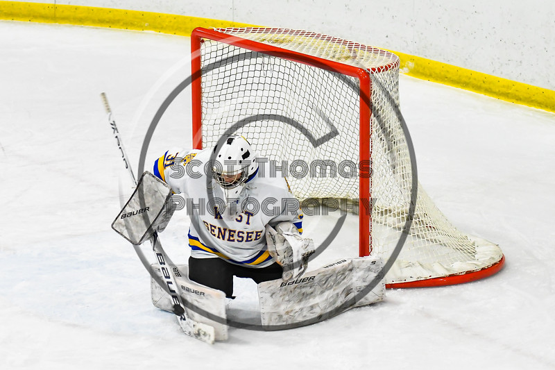 West Genesee Wildcats goalie Chris Wells (31) makes a save against the Baldwinsville Bees in NYSPHSAA Section III Boys Ice hockey action at Shove Park in Camillus, New York on Tuesday, January 29, 2019. West Genesee won 5-1.