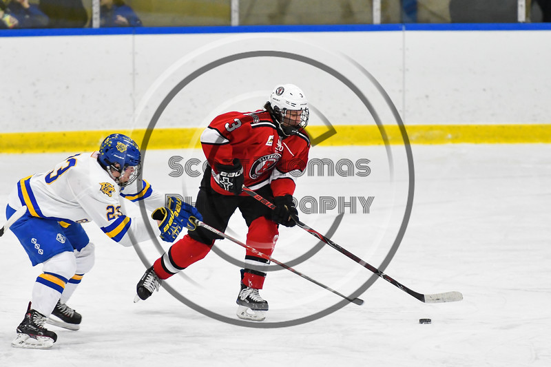 Baldwinsville Bees Ryan Muscatello (3) skating with the puck away from West Genesee Wildcats Daniel Holzhauer (23) in NYSPHSAA Section III Boys Ice hockey action at Shove Park in Camillus, New York on Tuesday, January 29, 2019. West Genesee won 5-1.