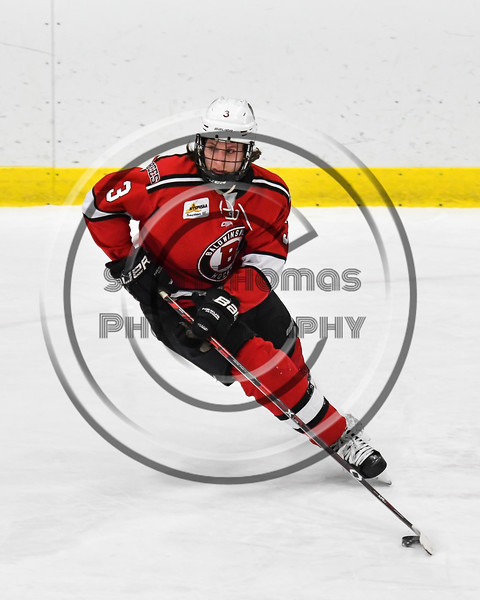 Baldwinsville Bees Ryan Muscatello (3) with the puck against the West Genesee Wildcats in NYSPHSAA Section III Boys Ice hockey action at Shove Park in Camillus, New York on Tuesday, January 29, 2019. West Genesee won 5-1.
