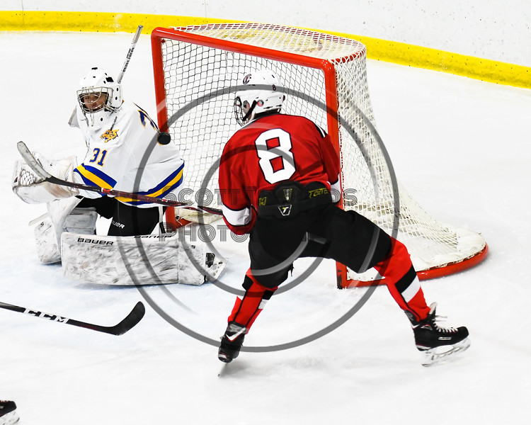 Baldwinsville Bees Parker Schroeder (8) bats the puck past West Genesee Wildcats goalie Chris Wells (31) for a goal in NYSPHSAA Section III Boys Ice hockey action at Shove Park in Camillus, New York on Tuesday, January 29, 2019. West Genesee won 5-1.