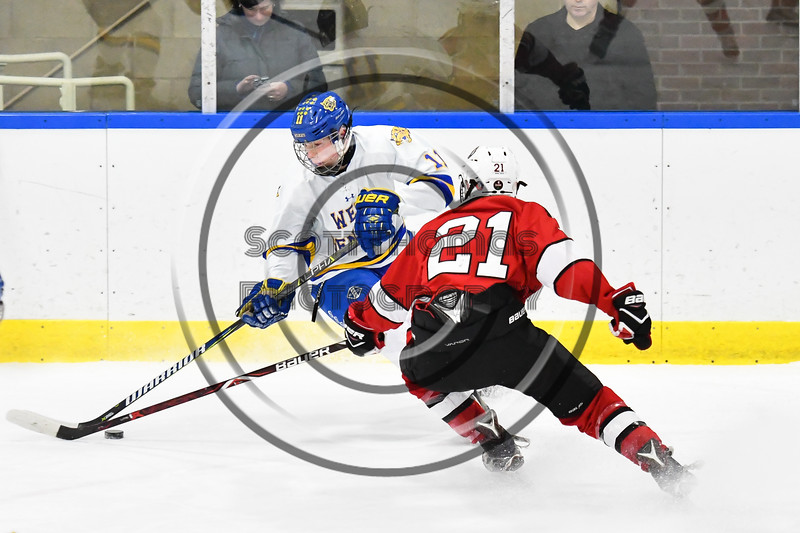 Baldwinsville Bees Cameron Sweeney (21) defending against West Genesee Wildcats Andrew Schneid (11) in NYSPHSAA Section III Boys Ice hockey action at Shove Park in Camillus, New York on Tuesday, January 29, 2019. West Genesee won 5-1.