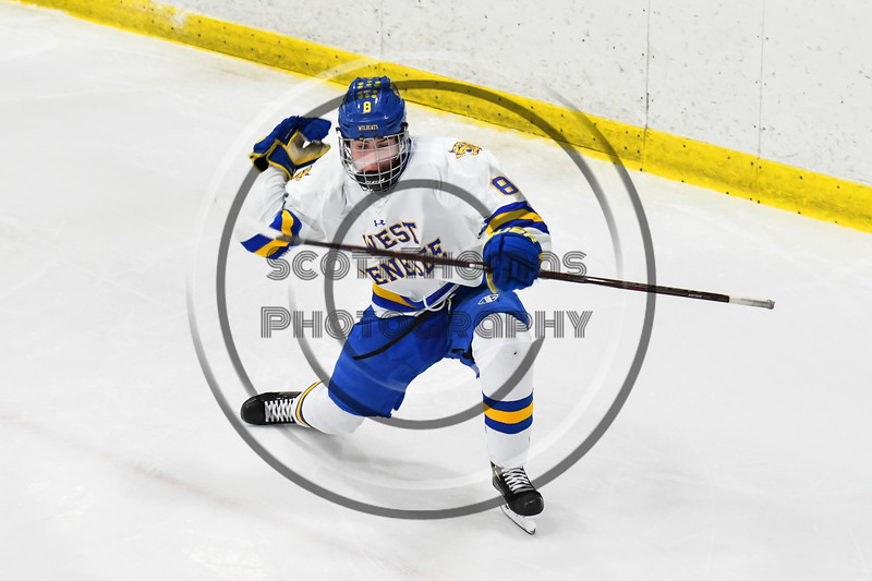 West Genesee Wildcats Billy Fisher (8) celebrates his goal against the Baldwinsville Bees in NYSPHSAA Section III Boys Ice hockey action at Shove Park in Camillus, New York on Tuesday, January 29, 2019. West Genesee won 5-1.