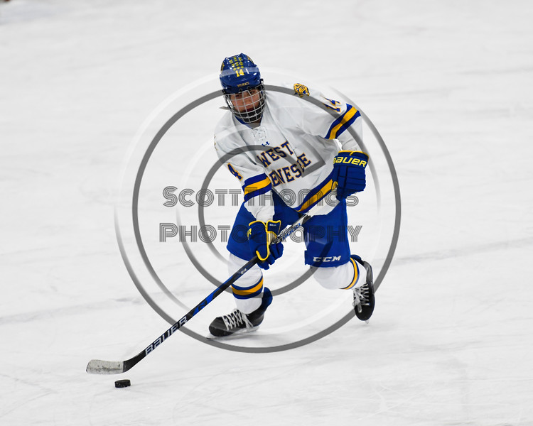 West Genesee Wildcats Anthony Felix (14) with the puck against the Baldwinsville Bees in NYSPHSAA Section III Boys Ice hockey action at Shove Park in Camillus, New York on Tuesday, January 29, 2019. West Genesee won 5-1.