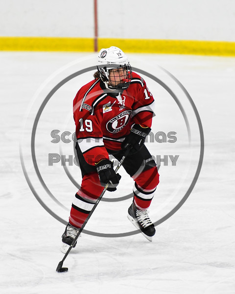 Baldwinsville Bees Michael Marsallo (19) skating with the puck against the West Genesee Wildcats in NYSPHSAA Section III Boys Ice hockey action at Shove Park in Camillus, New York on Tuesday, January 29, 2019. West Genesee won 5-1.