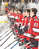 Baldwinsville Bees lined up on the Blue Line for the National Anthem before playing the Rome Free Academy Black Knights in a NYSPHSAA Section III Boys Ice hockey playoff game at John F. Kennedy Civic Arena in Rome, New York on Friday, February 15, 2019.