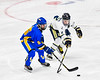 Skaneateles Lakers Cam Lowe (2) battles for the puck with Cortland-Homer Golden Eagles Jake Prunier (15) in the Section III, Division II Boys Ice Hockey Championship game at the War Memorial Arena in Syracuse, New York on Monday, February 25, 2019.  Skaneateles Lakers won 4-1.