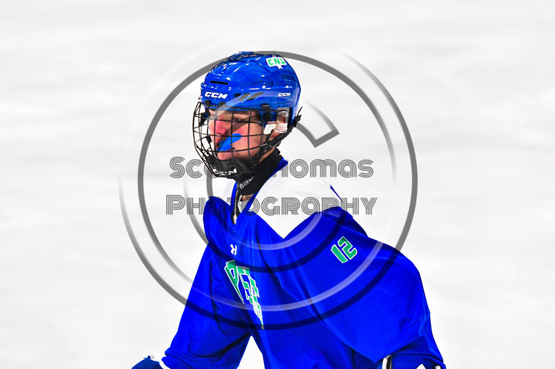 Cicero-North Syracuse Northstars Sam Richardson (12) on the ice against the Baldwinsville Bees in NYSPHSAA Section III Boys Ice Hockey action at the Lysander Ice Arena in Baldwinsville, New York on Tuesday, January 21, 2020. Baldwinsville won 7-0.