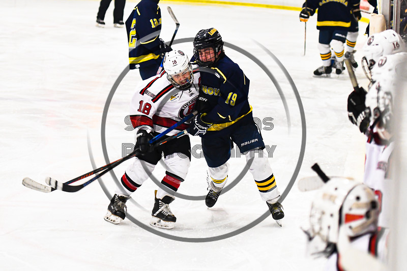 Baldwinsville Bees Matt Speelman (18) checks and separates the puck from Cazenovia Lakers Jacob Owens (19) in NYSPHSAA Section III Boys Ice Hockey action at the Lysander Ice Arena in Baldwinsville, New York on Friday, January 31, 2020. Baldwinsville won 8-1.
