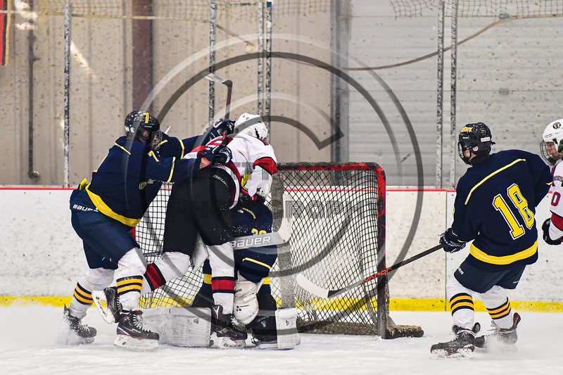 Baldwinsville Bees Matt Carner (9) crashes the net to score a goal against the Cazenovia Lakers in NYSPHSAA Section III Boys Ice Hockey action at the Lysander Ice Arena in Baldwinsville, New York on Friday, January 31, 2020. Baldwinsville won 8-1.