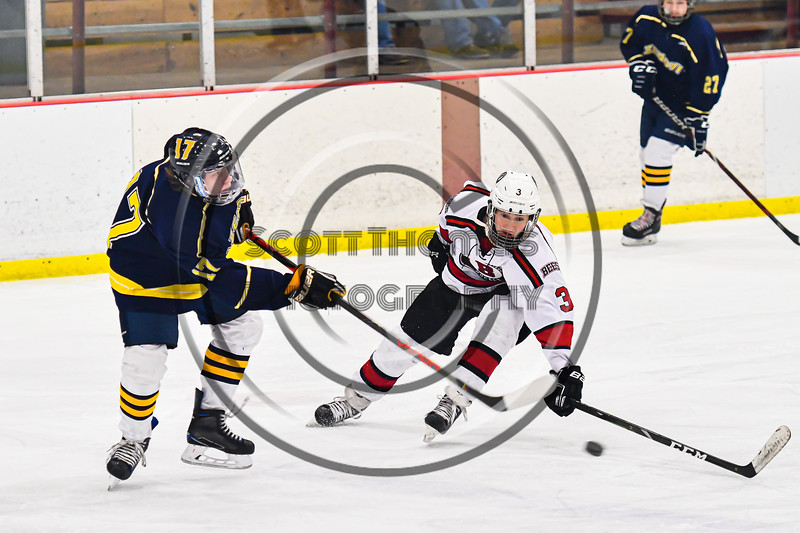 Baldwinsville Bees Colin Bourque (3) defending against Cazenovia Lakers Jacob Grevelding (17) in NYSPHSAA Section III Boys Ice Hockey action at the Lysander Ice Arena in Baldwinsville, New York on Friday, January 31, 2020. Baldwinsville won 8-1.