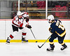 Baldwinsville Bees Braden Lynch (23) passes the puck against the West Genesee Wildcats in NYSPHSAA Section III Boys Ice Hockey action at the Lysander Ice Arena in Baldwinsville, New York on Tuesday, February 4, 2020. West Genesee won 3-1.