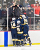 West Genesee Wildcats players congratulate Billy Fisher (8) for his goal against the Baldwinsville Bees in NYSPHSAA Section III Boys Ice Hockey action at the Lysander Ice Arena in Baldwinsville, New York on Tuesday, February 4, 2020. West Genesee won 3-1.