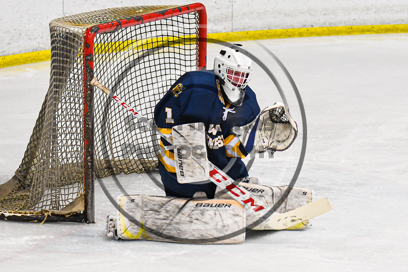 West Genesee Wildcats goalie David Myers (1) makes a save against the Baldwinsville Bees in NYSPHSAA Section III Boys Ice Hockey action at the Lysander Ice Arena in Baldwinsville, New York on Tuesday, February 4, 2020. West Genesee won 3-1.