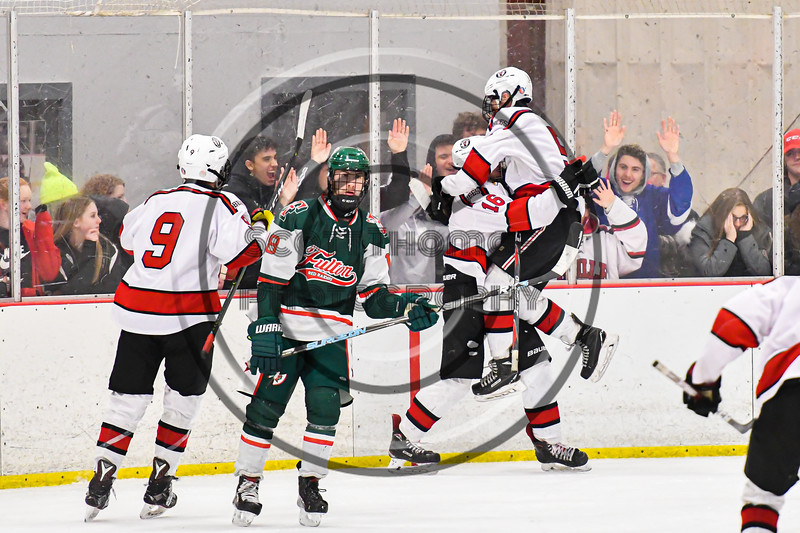 Baldwinsville Bees Alexander Pompo (5) celebrates the goal by Bees Luke Hoskin (16) against the Fulton Red Raiders in NYSPHSAA Section III Boys Ice Hockey action at the Lysander Ice Arena in Baldwinsville, New York on Thursday, February 20, 2020. Baldwinsville won 2-1.