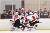 Baldwinsville Bees players and fans celebrate the goal by Bees Luke Hoskin (16) against the Fulton Red Raiders in NYSPHSAA Section III Boys Ice Hockey action at the Lysander Ice Arena in Baldwinsville, New York on Thursday, February 20, 2020. Baldwinsville won 2-1.