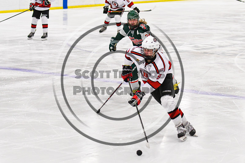Baldwinsville Bees Matt Carner (9) carrying the puck against the Fulton Red Raiders in NYSPHSAA Section III Boys Ice Hockey action at the Lysander Ice Arena in Baldwinsville, New York on Thursday, February 20, 2020. Baldwinsville won 2-1.