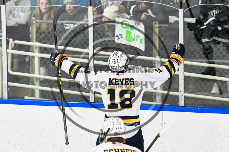 West Genesee Wildcats Jeremy Keyes (19) celebrates his goal against the Fayetteville-Manlius Hornets in a NYSPHSAA Section III Boys Ice hockey playoff game at the Shove Park in Camillus, New York on Wednesday, February 26, 2020. West Genesee won 4-1.