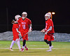 Baldwinsville Bees Kyle Terrell (18) celebrates his goal 15 seconds after Kyle Akers' (25) against the West Genesee Wildcats in Boys Lacrosse on Tuesday, April 8, 2014 at Camillus, New York. West Genesee won 8-5.