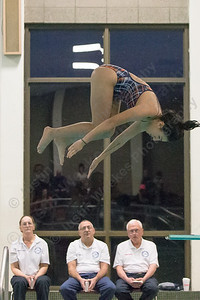 Lyman Hall's CC Hernandez completes a dive Thursday at the Sheehan High School Natatorium in Wallingford  February 1, 2018   Justin Weekes / Special to the Record-Journal