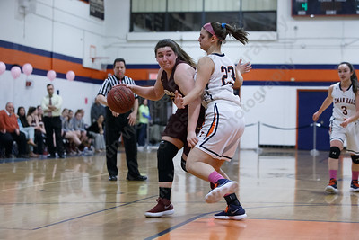 Sheehan's Carolyn Biel tries to drive on Lyman Hall's Sam Carbone Monday at Lyman Hall High School in Wallingford February 12, 2018 | Justin Weekes / Special to the Record-Journal