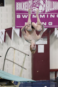 Sheehan's Andrew Buehler fifth round dive Thursday during the CIAC Diving open at Bulkeley High School in Hartford March 15, 2018 | Justin Weekes / Special to the Record-Journal