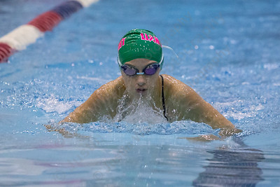 Sheehan's Rachel Kerrigan swims the breast stroke in the 200 medley relay Wednesday during the SCC swimming finals at the Hutchinson Natatorium on the campus of Southern Connecticut State University in New Haven November 1, 2017 | Justin Weekes / For the Record-Journal