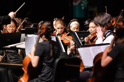 2015-04-22_Long Reach Music Spring Concert-046