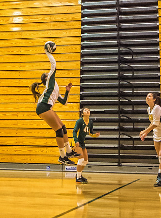 EHS Volleyball-051