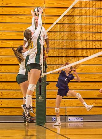 EHS Volleyball-030