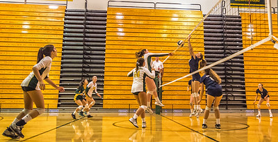 EHS Volleyball-054