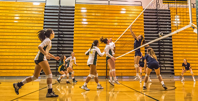 EHS Volleyball-056