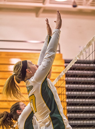 EHS Volleyball-016