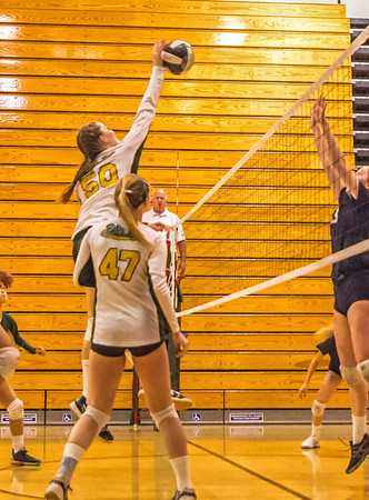 EHS Volleyball-066-2