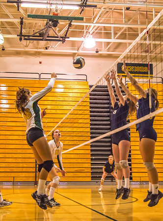 EHS Volleyball-062