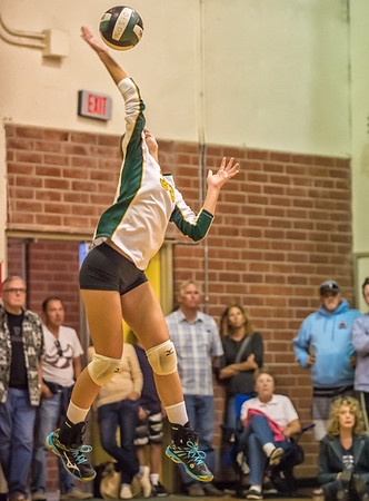 EHS Volleyball-010
