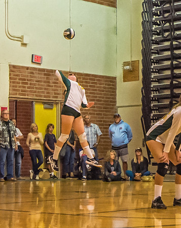 EHS Volleyball-079