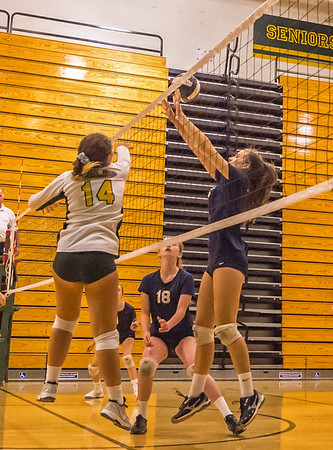 EHS Volleyball-086