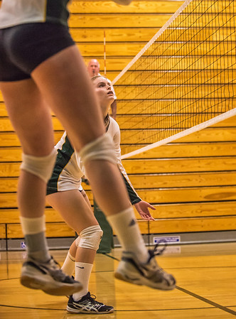 EHS Volleyball-020