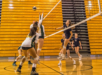 EHS Volleyball-041