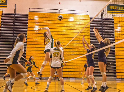 EHS Volleyball-065