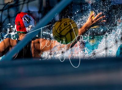 Water Polo Holiday tournament-117nik